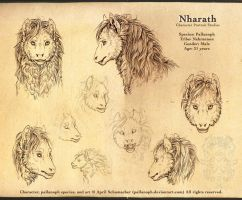 Nharath: Portrait Studies by pallanoph