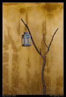 The Lighting Tree by Aderet