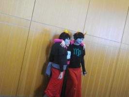 Nekocon Pictures 10 by dogo987
