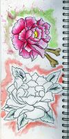 Tattoo Flash  peony  rose by counterpop