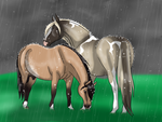 Shelter in the Storm by RVMStables