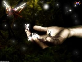 fairy contact by megakorean