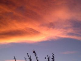 Today's Sky at sunset - Phoenix by tato-11