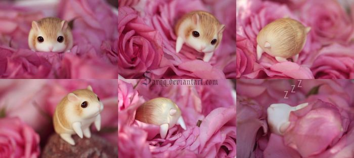 Hamster awesomeness by Sarqq