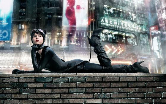 Catwoman - Selina Kyle from DC Comics by FioreSofen