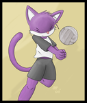Volleyball cat by Bluekity