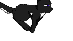 Ravenpaw Run Cycle*ANIMATION!* by Jersey-Cat