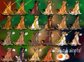 23 cheap male cub adopts! OPEN plus EDITS by Cynderthedragon5768
