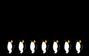 Minimalist Penguin Wallpaper by Fritters