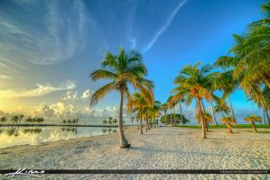 Coral-Gables-Matheson-Park-Beautiful-Morning-in-Mi by CaptainKimo