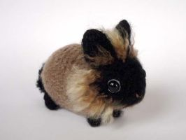 Colorful lionhead bunny by LunasCrafts