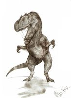 Allosaurus fragilis by Teratophoneus