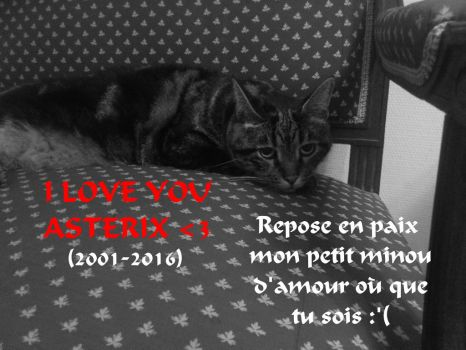 REST IN PEACE ASTERIX, I LOVE YOU :'( by Sarha-solar