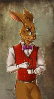 Dr March Hare by fiszike