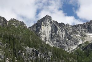Mountains and Evergreen Forest by GreenEyezz-stock