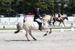 Outdoor Brabant Stock 53 by chronically