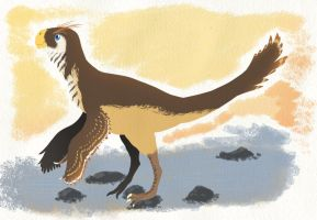 Conchoraptor by Spikeheila