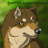New icon :D by lyoth737