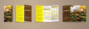 Eat Healthy - Brochure by AbhaySingh1