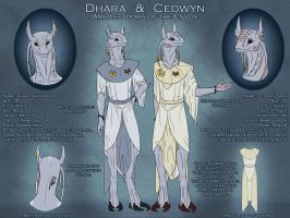 Dhara and Cedwyn: Ref by Naeomi