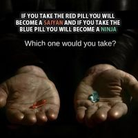 red pill or blue pill by gamerma