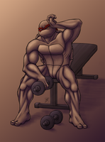 Weights by skycat