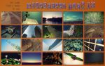 widescreen pack 18 by ether