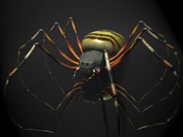 Spider Tiger 3D by 3DSud