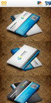 Classic Business Cards 2 by flash-infinity