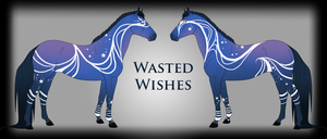 Wasted Wishes Ref by Drasayer
