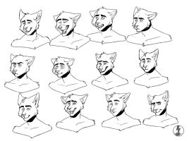 expression sheet comm. by Inkzap