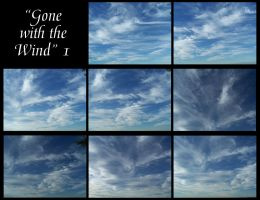 Gone with the wind - 1 by Hermit-stock