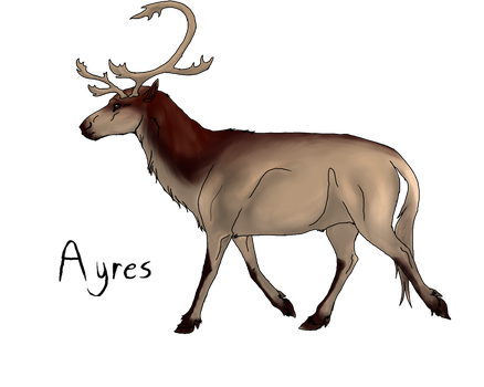 Ayres -- Cervine breed concept by FellDeer