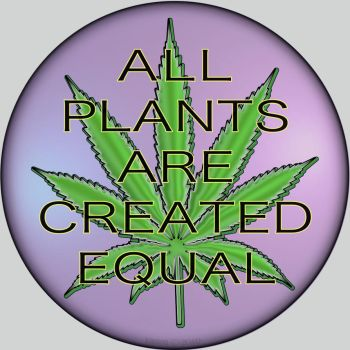 All Plants are Created Equal by raven-haven-creation