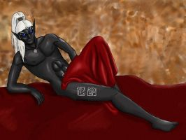 Chronachan - Finished by lover-of-the-Drow