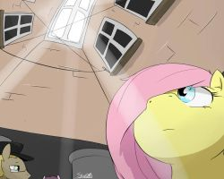Fluttershy going to Jongno 5 by Swomswom