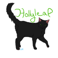 Hollyleaf by courtneyrc