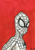 Spider-Man Red sketch card by johnnyism