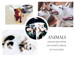 Animals [IPE + PSD Coloring] #002 by OnlyWolfs
