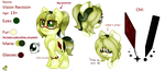[MLP] Vision Revision (Reference Sheet UPDATE) by Amberpon3