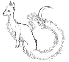 Vulpes falc species line art by HikaruisAves