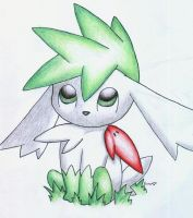 Shaymin Sky Form Finished by Togechu