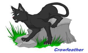 Crowfeather by Marshcold