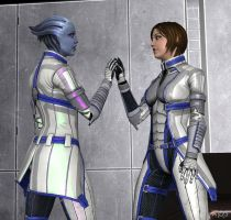 Mass Effect:  Parallels by CharlesWS