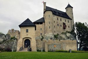 Castle in Bobolice by Mateusz78