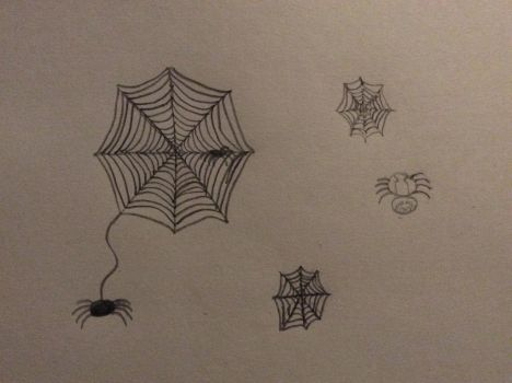 Spiders and spider webs by fairyqueen1999