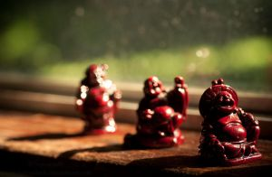 Little Buddhas on the Windowsill by Suinaliath