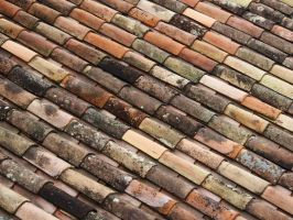 Roof tiles in St Emilion by Dogbytes