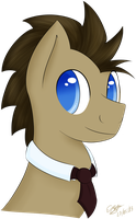 Doctor Whooves by extreme-sonic