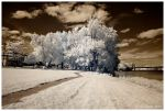 Infrared Path by escape-is-at-hand